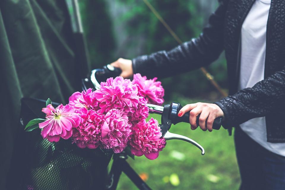 bike-791580_960_720