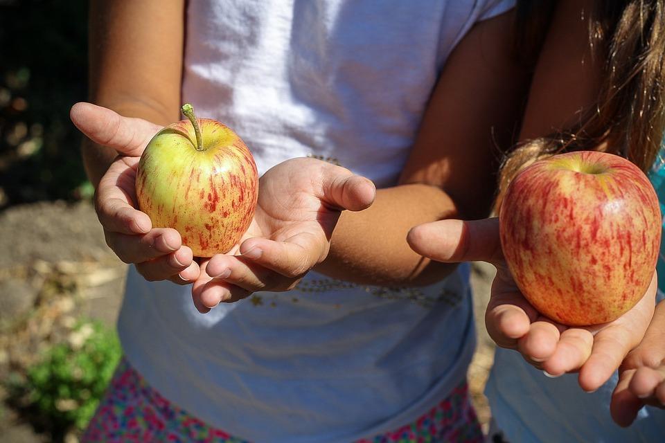 apple-1572648_960_720